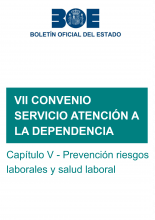 VII Convenio colectivo marco estatal de servicios de atención a las personas dependientes y desarrollo de la promoción de la autonomía personal. Capítulo V: Prevención de riesgos laborales y salud laboral